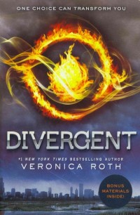 If You Like Divergent, Try One of These