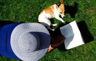5 Fantastic Summer Staycation Reads