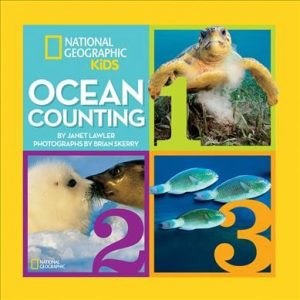 book cover for ocean counting